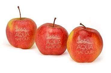 Fruchtbeschrifter Individuelle Obst Und Apfelbeschriftung Logoobst Beschriftung Mit Laser